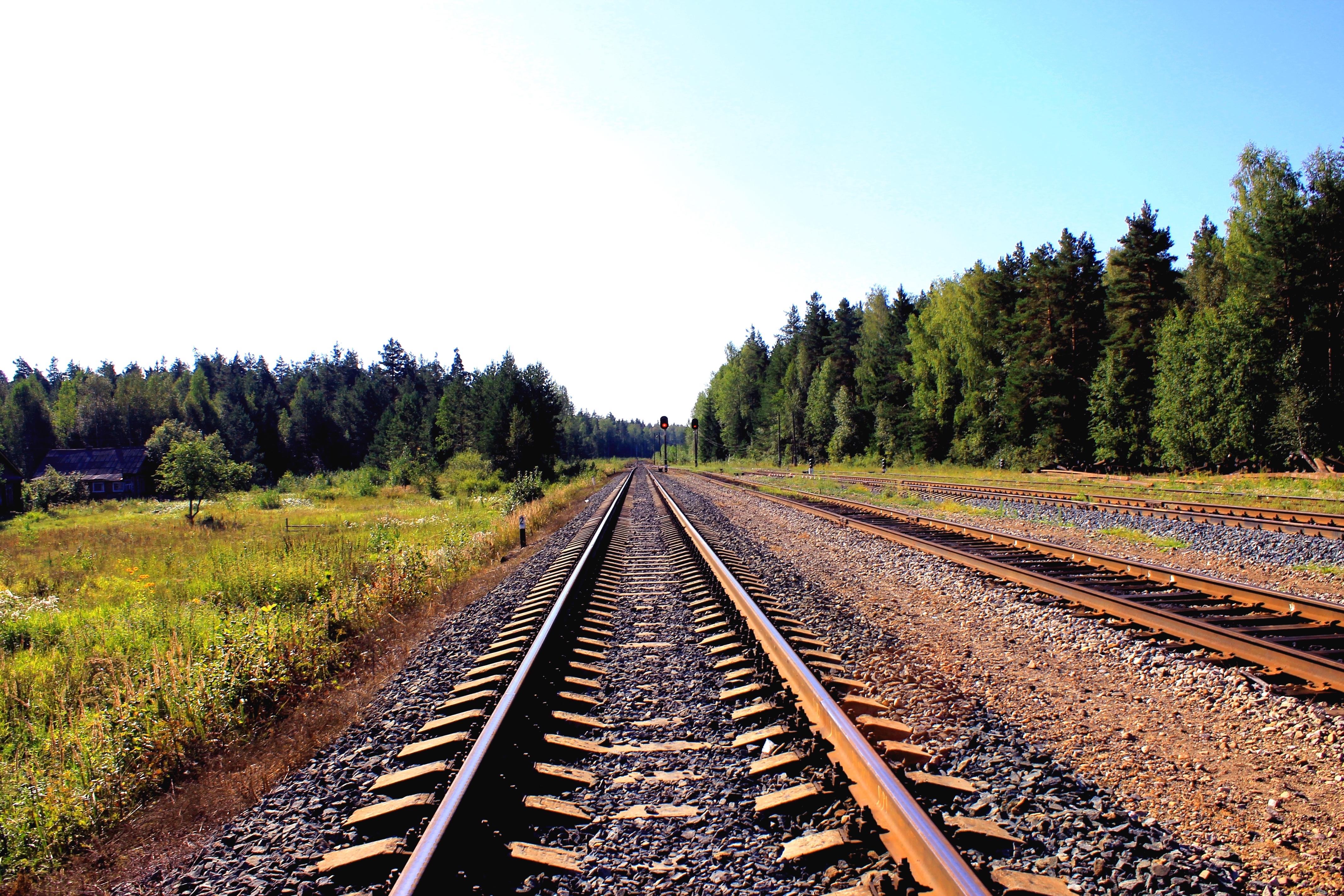 Uwielbiam podróże pociągiem. Nawet PKP. Nawet drugą klasą.