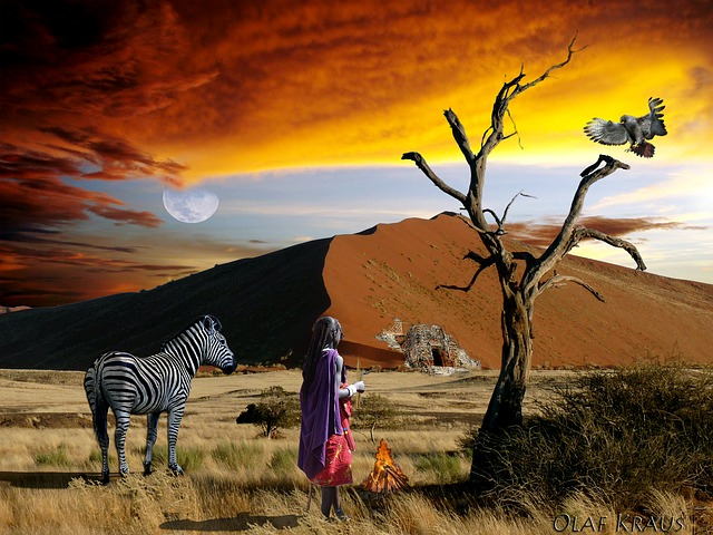 safari-227872_640